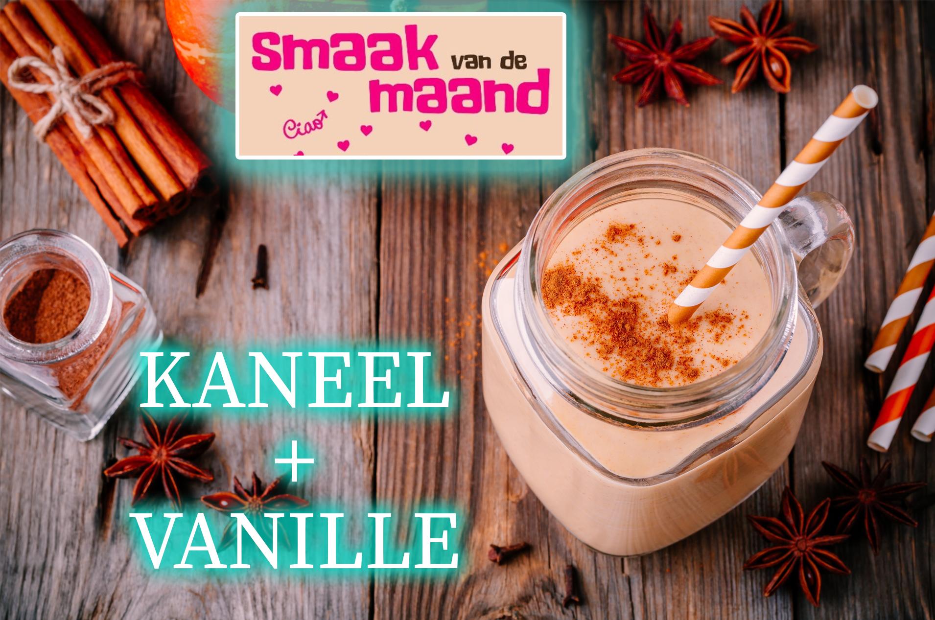 Smaak van de maand kaneel-vanille - eiwit shake